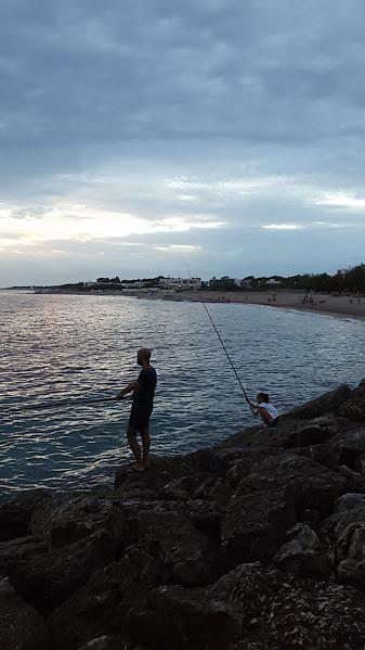 Campo marino